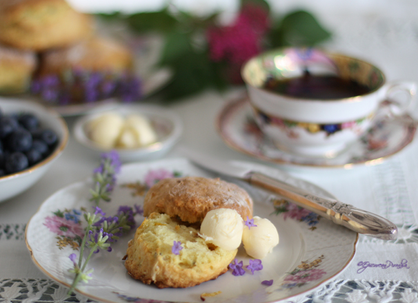 Fresh lavender & lemon scones